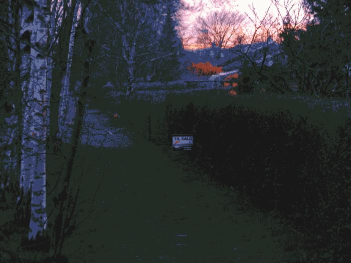 Skumring  - det er naboens hus, der er til salg