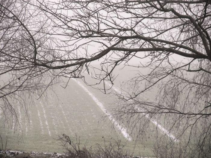 Forudsagt frostmorgen med dis, rimfrost og grovkornet sne
